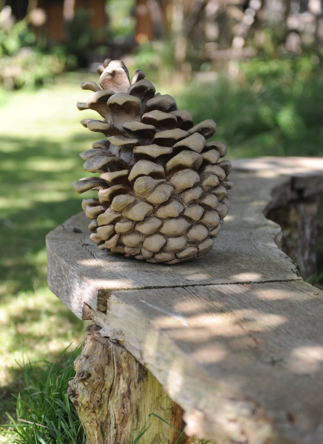Large Fir cone