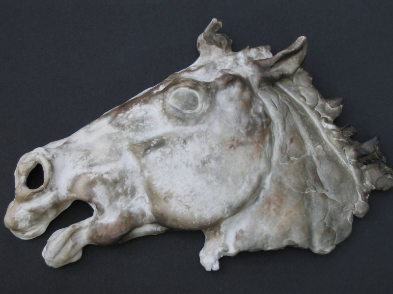 Clare Pavey Horse's Head