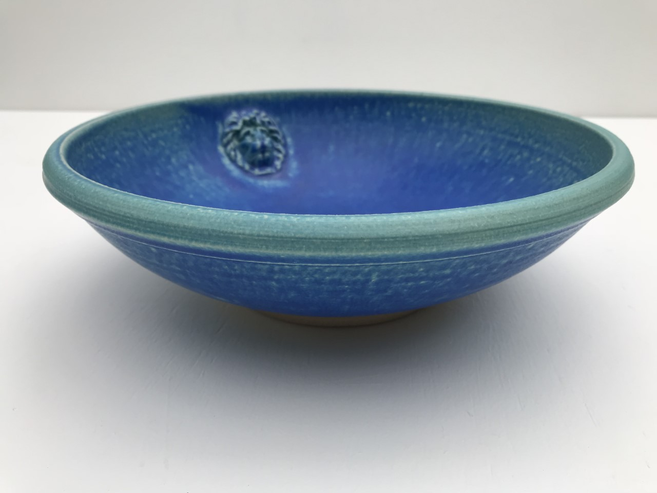 Mike Braisher 5 J.pg Lion bowl